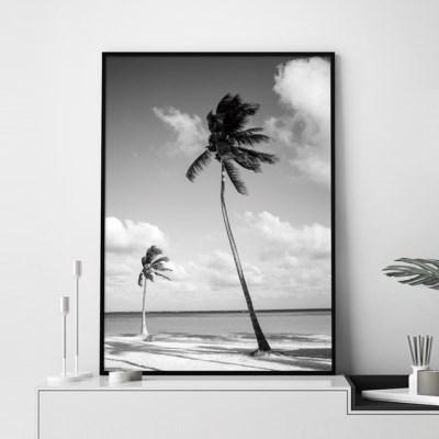 흑백 야자수 보테니컬 그림 인테리어 액자 포스터