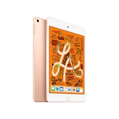 iPad mini Wi-Fi 256GB 골드 MUU62KH/A