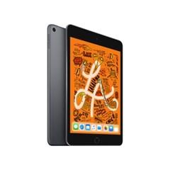 iPad mini Wi-Fi 256GB 스페이스그레이 MUU32KH/A
