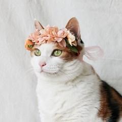 블라썸 화관 고양이 강아지 머리띠