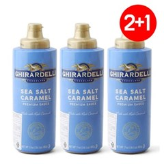 2+1 기라델리 씨솔트 카라멜 토핑용 소스 482g (2019.06.30)