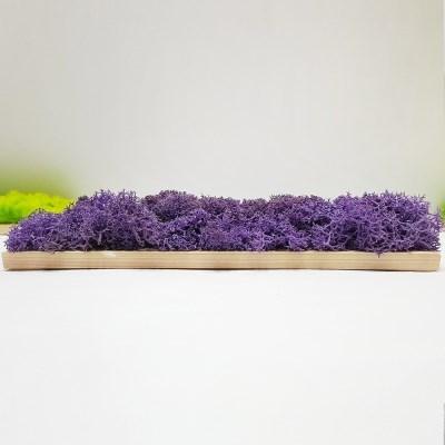 편백 스칸디아모스 포인트벽지 / DIY 손쉬운 블럭형 중X5개