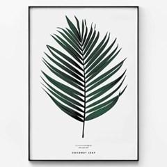 메탈 모던 식물 자연 그림 포스터 액자 코코넛 나뭇잎