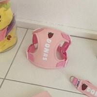 [이름 각인] Fruits harness (pink)