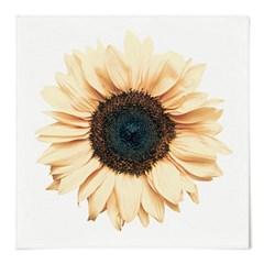 패브릭 포스터 S028 그림 꽃 천 액자 해바라기 플라워
