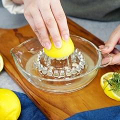 보르고노보 유리 레몬 스퀴저 착즙기