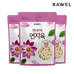 [로엘] 연자육(연꽃씨앗/연심제거/연심밥) 500g 3팩