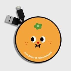 cute mandarine-orange(스마트릴)_(1175509)