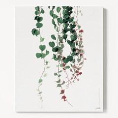 캔버스 식물 모던 그림 풍경 감성 액자 그린 아이비 B