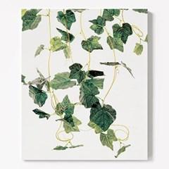 캔버스 보테니컬 식물 인테리어 액자 그린 넝쿨