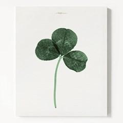 캔버스 식물 인테리어 천 액자 세잎 클로버 행복