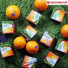 [서울우유]오렌지나무 150ml x 48팩