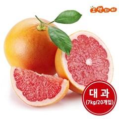 남아공 레드자몽 대과 7kg (20개입)_(1380184)