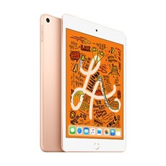 iPad mini 5세대 Wi-Fi 256GB 골드