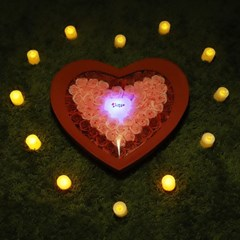 비누장미(대)+LED촛불 조명세트_(301717093)