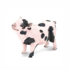 [사파리엘티디] 266029/포크벨리미니돼지 동물피규어_(1374038)