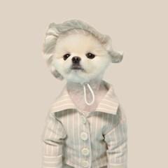 베이지 스트라이프 강아지 모자