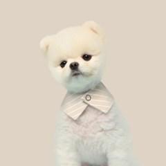 베이지 스트라이프 강아지 넥카라