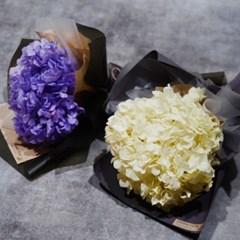 수국꽃다발 시들지않는 생화 예쁜 졸업식 꽃다발_(1839202)