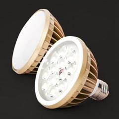 [씨티오] LED PAR30 15W (확산형, 집중형)_(1664201)