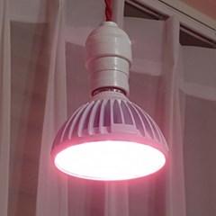 LED식물전구 식물생장용전구 광합성전구 LED GROW LAMP