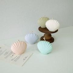 조개캔들(5colors)
