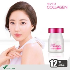 [액티브유] 에버콜라겐 유브이케어 UV Care 12병(48주)