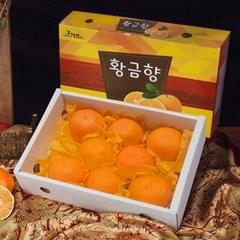 [제주연가]황금향 2kg 6~9과
