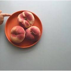 [에코보] 밤비노 스몰 플레이트 (Bambino Small Plate)