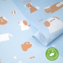 고급 친환경 포장지 렛츠플레이 (3장)