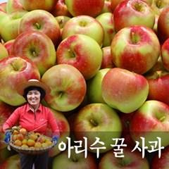 경북 상주 아리수 사과 ( 19과~22과 5kg )