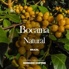 브라질 보카이나 내추럴 (Brazil Bocaina Yellow catuai Natural)