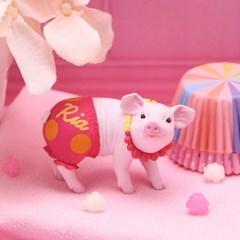 레나스 미니피그 미니피규어_Lena's  Mini Pig(랜덤)