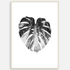 몬스테라액자 식물 보타니컬 나뭇잎그림 인테리어