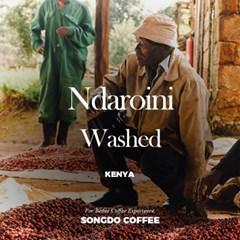 케냐 니에리 응다로이니 AA Kenya Nyeri Ndaroini Washed