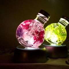 플라워 하바리움 + LED 무드등