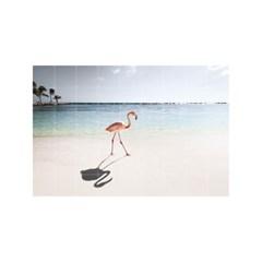 Pink Paradise_(1616226)