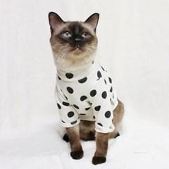 [CAT] 몽페레 플러피 도트맨투맨 (Milk Cream)