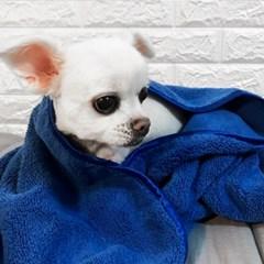 펫타올 반려동물을 위한 펫타월 강아지 고양이