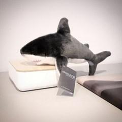 Sedona Sage Shark 12 inch - 세도나세이지 샤크 12인치