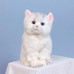 이젠돌스 위더펫 리얼 고양이 인형 페르시안(화이트)_(1427251)