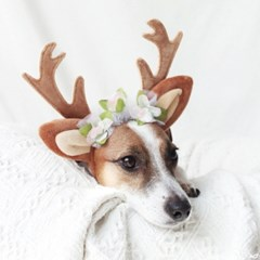 꽃사슴 루돌프 머리띠 크리스마스 고양이 강아지 모자 Miyopet