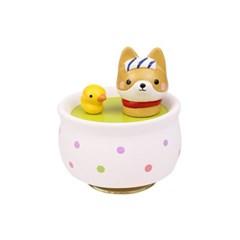 목욕하는 시바(강아지)