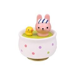 목욕하는 토끼