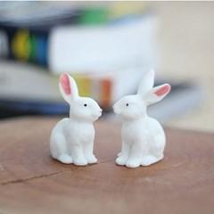 미니 토끼 2P세트