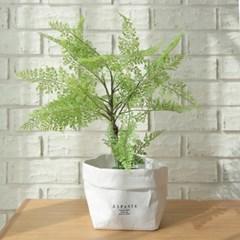 코델리아 보스톤 미니조화나무-실내인테리어,조화식물,_(100852035)