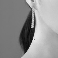 (92.5 silver) move drop earring