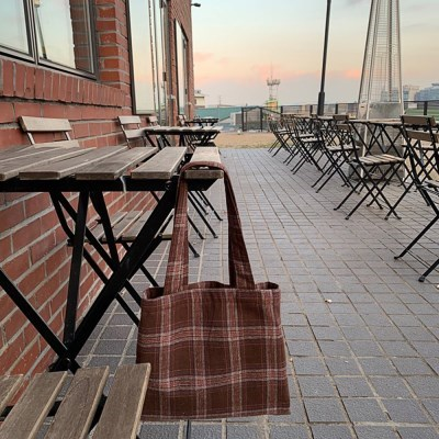check mini bag_brown