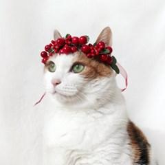 크리스마스 열매 리스 화관 머리띠 고양이 강아지 옷 모자 Miyopet