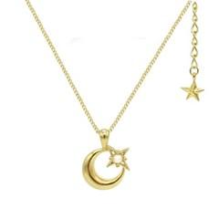 Heart Petit Necklace